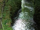第8回 水の都