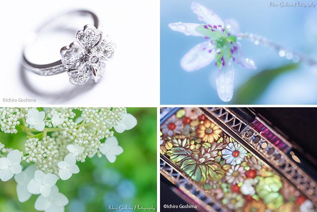 The Botanical Garden ~Photo & Jewelry~