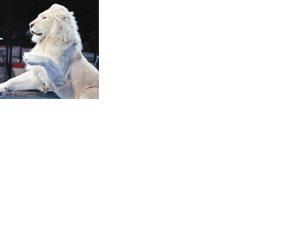 http://www.kanazawabiyori.com/contents/wp-content/uploads/2019/12/prettl200101.png
