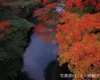 今から見頃。北陸3県の紅葉スポットを厳選してご紹介。