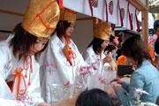 明日より、『金崎宮 花換まつり』が福井県敦賀市で開催。