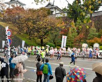 金沢マラソン2016を応援しよう
