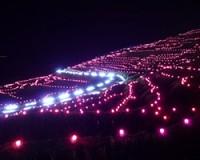 輪島市の白米千枚田で、『あぜのきらめき』開催中。