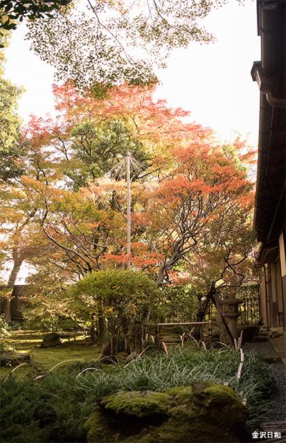 terashimakurando3961