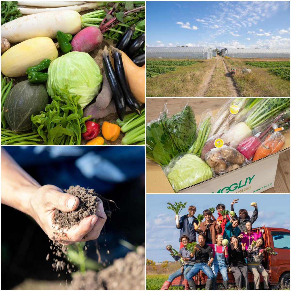 1月限定!超得「専属農家キャンペーン」