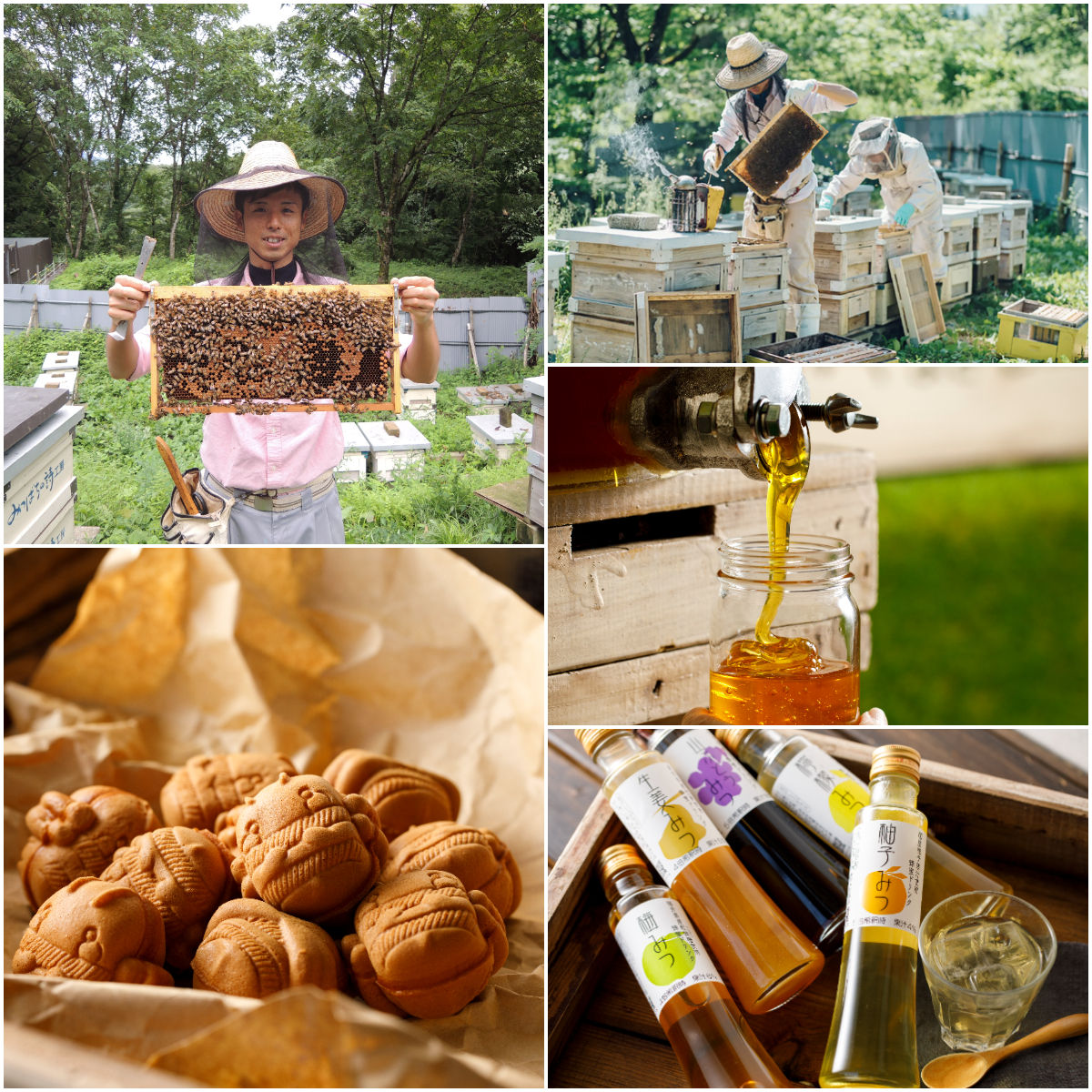 【6/12・13】『金澤やまぎし養蜂場 大桑店』で1年に1度の「初採り! アカシア祭り」を開催。